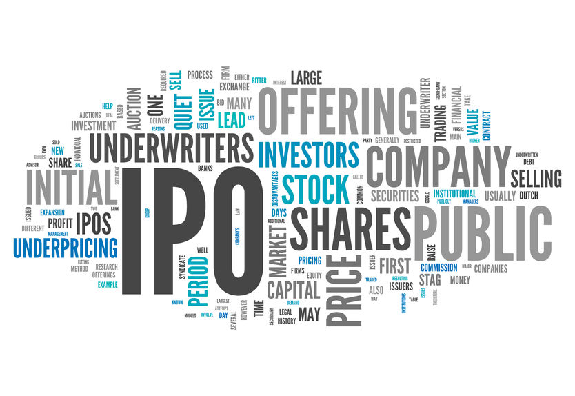 The Initial Public Offering (IPO) Introduction
